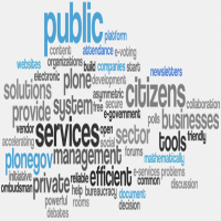 Government E-Services